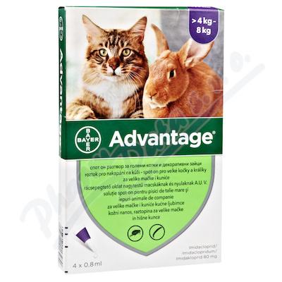 Advantage 80mg velké kočky+králíci spot-on 4x0.8ml